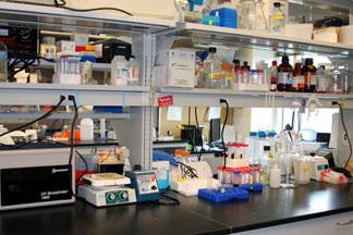 Laboratory Techniques service